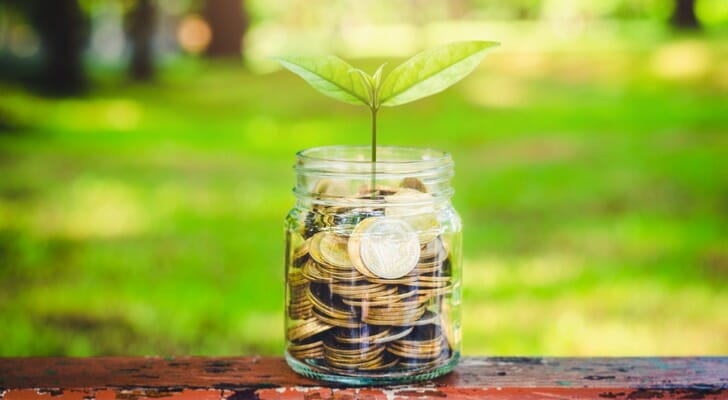 Green plant growing out of a jar of coins